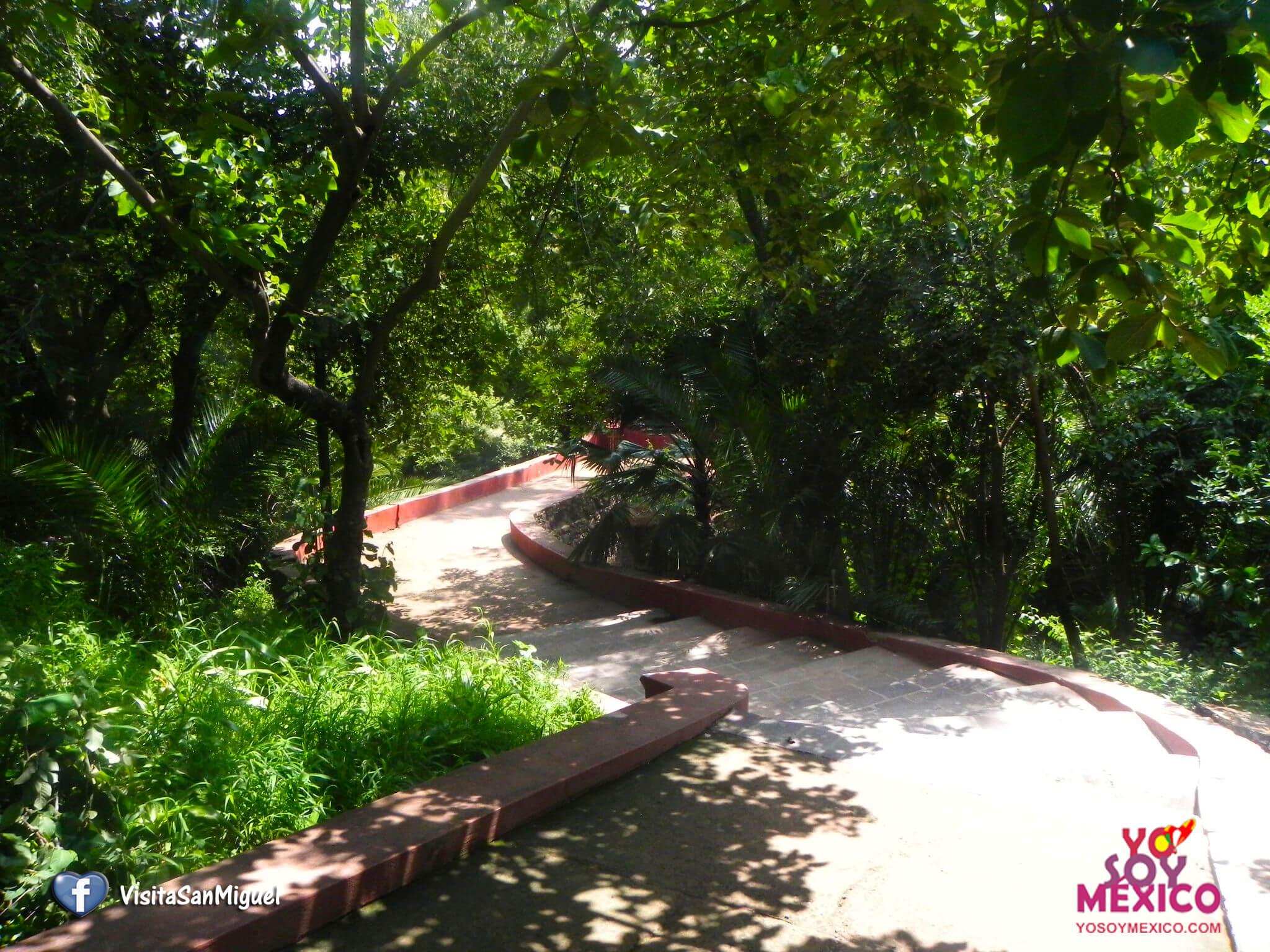 El Parque Juárez
